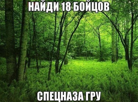 Как найти военного разведчика в лесу?